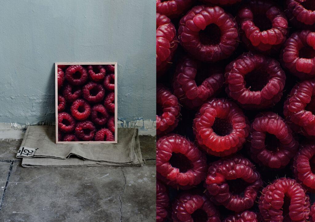 Red raspberries photo print. Ulrika Ekblom Photography print.